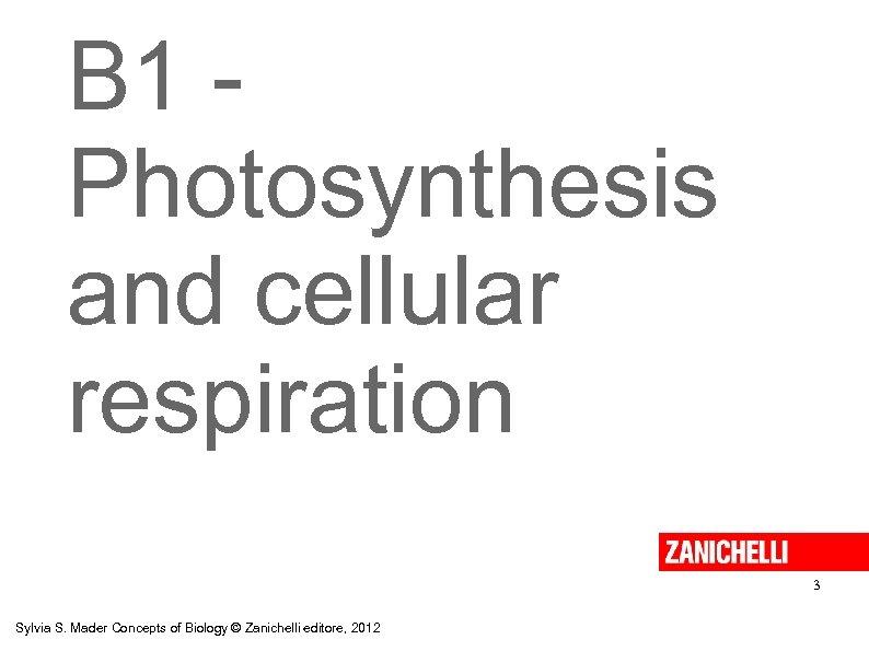 B 1 Photosynthesis and cellular respiration 3 Sylvia S. Mader Concepts of Biology ©