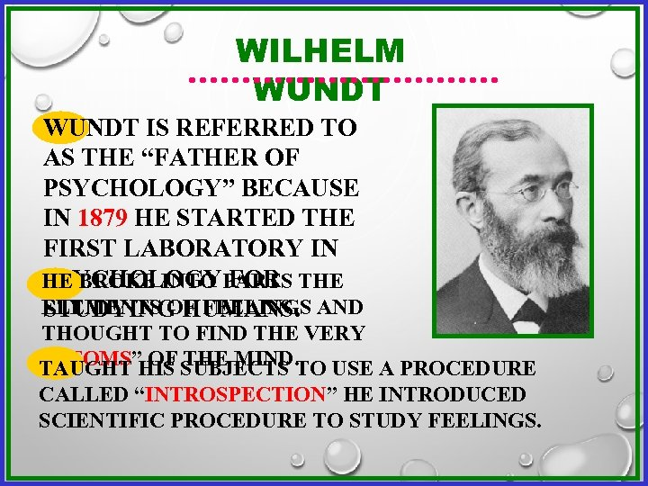 """WILHELM WUNDT IS REFERRED TO AS THE """"FATHER OF PSYCHOLOGY"""" BECAUSE IN 1879 HE"""