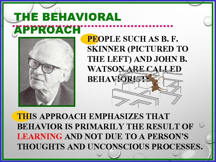 THE BEHAVIORAL APPROACH PEOPLE SUCH AS B. F. SKINNER (PICTURED TO THE LEFT) AND