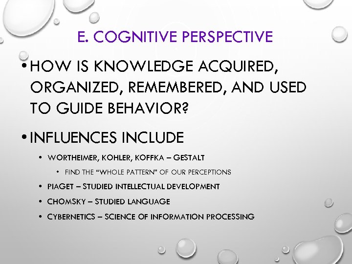 E. COGNITIVE PERSPECTIVE • HOW IS KNOWLEDGE ACQUIRED, ORGANIZED, REMEMBERED, AND USED TO GUIDE