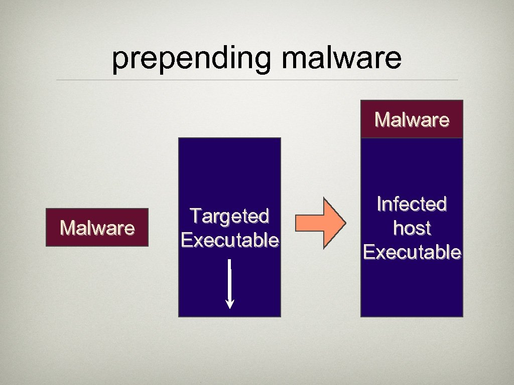 prepending malware Malware Targeted Executable Infected host Executable