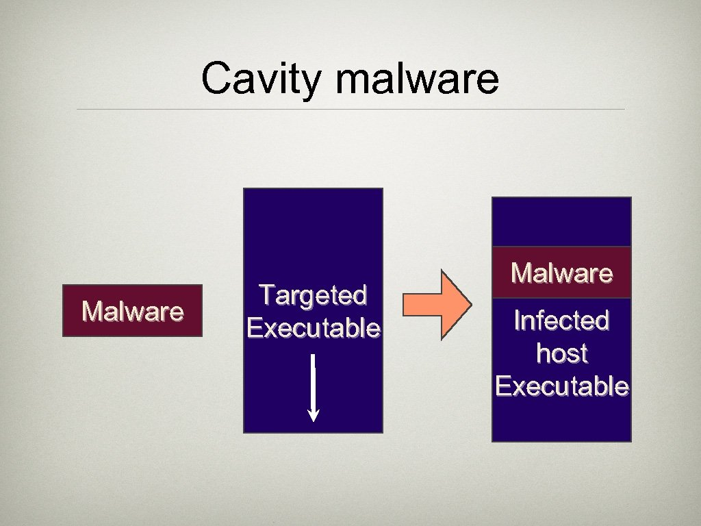Cavity malware Malware Targeted Executable Malware Infected host Executable