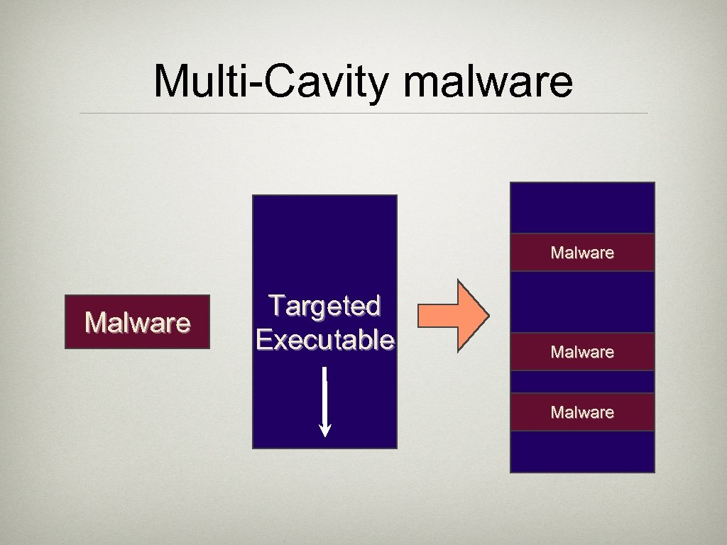 Multi-Cavity malware Malware Targeted Executable Malware