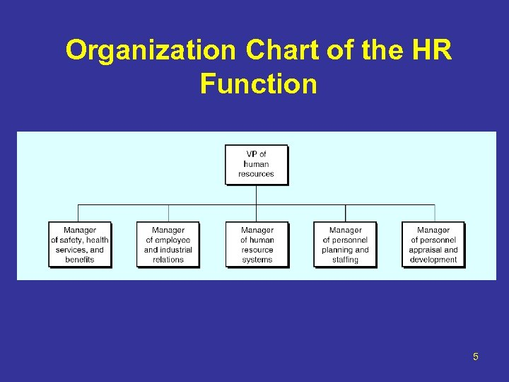 Organization Chart of the HR Function 5