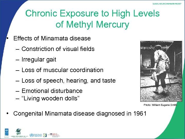 Chronic Exposure to High Levels of Methyl Mercury • Effects of Minamata disease –