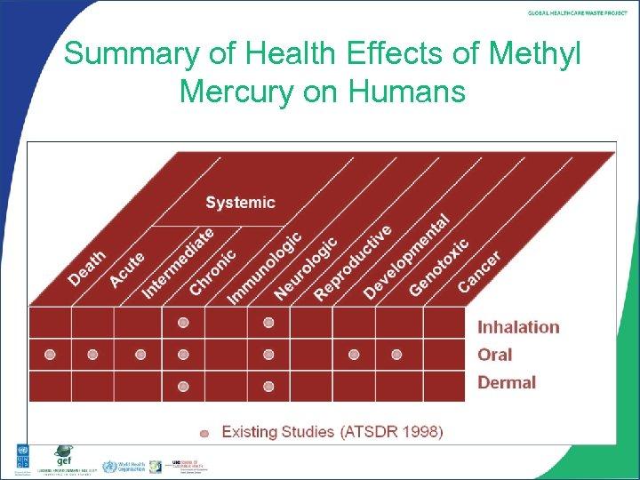 Summary of Health Effects of Methyl Mercury on Humans