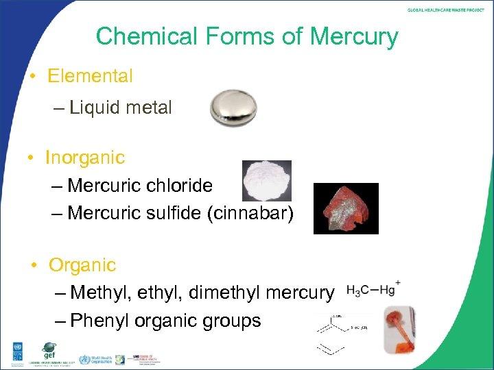 Chemical Forms of Mercury • Elemental – Liquid metal • Inorganic – Mercuric chloride