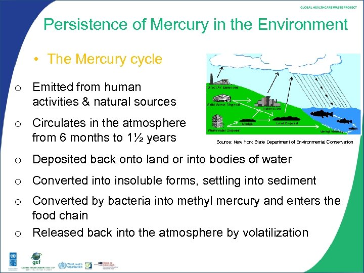 Persistence of Mercury in the Environment • The Mercury cycle o Emitted from human