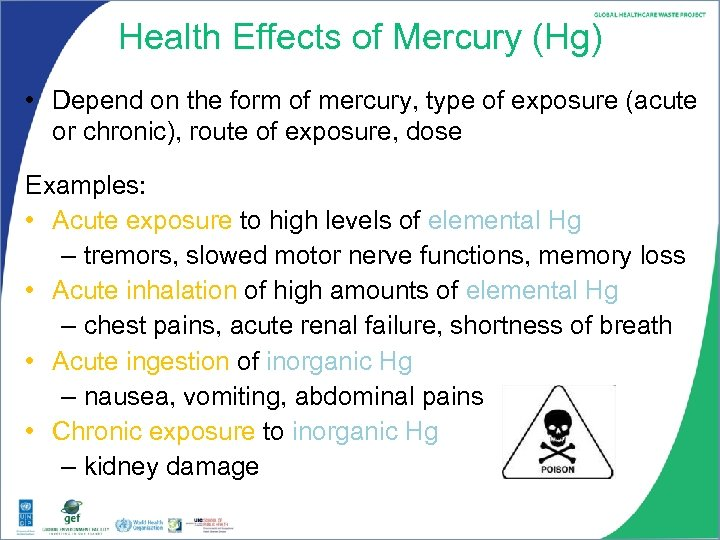 Health Effects of Mercury (Hg) • Depend on the form of mercury, type of