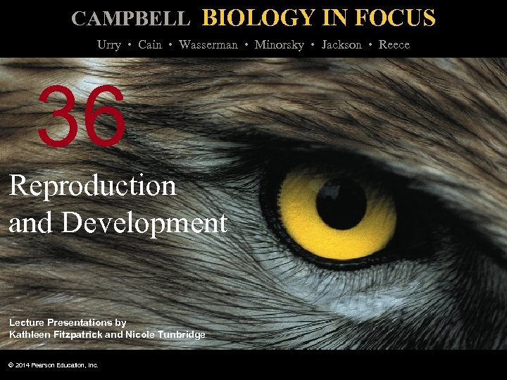 CAMPBELL BIOLOGY IN FOCUS Urry • Cain • Wasserman • Minorsky • Jackson •