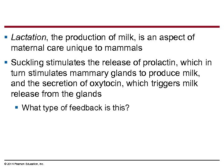 § Lactation, the production of milk, is an aspect of maternal care unique to