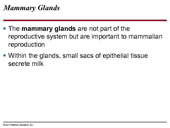 Mammary Glands § The mammary glands are not part of the reproductive system but