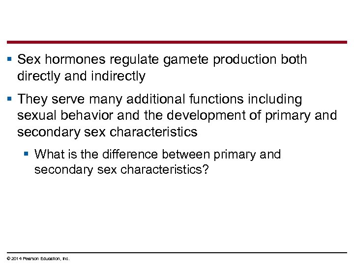 § Sex hormones regulate gamete production both directly and indirectly § They serve many
