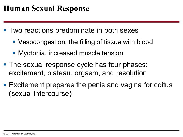 Human Sexual Response § Two reactions predominate in both sexes § Vasocongestion, the filling