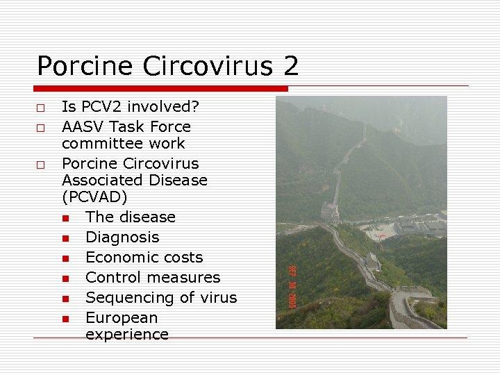 Porcine Circovirus 2 o o o Is PCV 2 involved? AASV Task Force committee