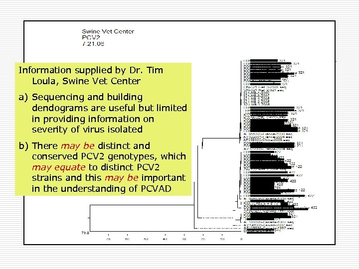 Information supplied by Dr. Tim Loula, Swine Vet Center a) Sequencing and building dendograms