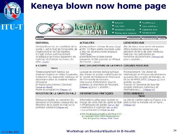 Keneya blown now home page ITU-T 23 -25 May 2003 Workshop on Standardization in