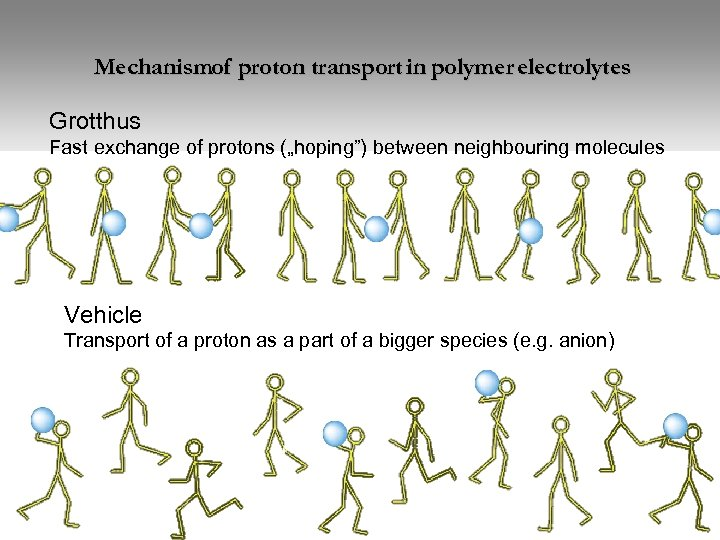 """Mechanismof proton transport in polymer electrolytes Grotthus Fast exchange of protons (""""hoping"""") between neighbouring"""