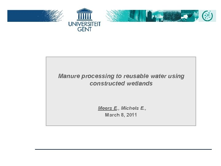 Manure processing to reusable water using constructed wetlands Meers E. , Michels E. ,