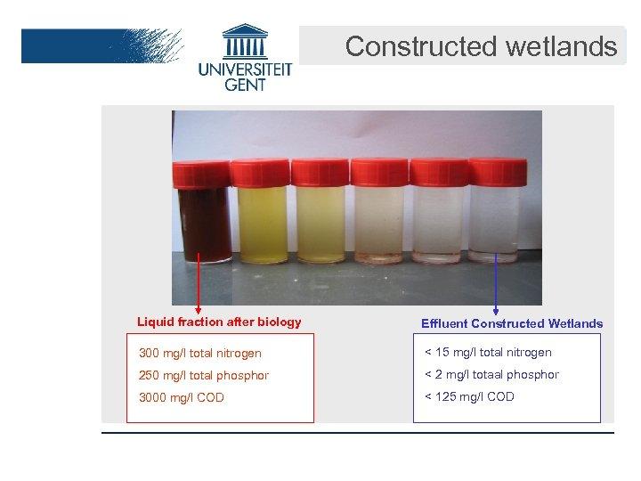 Constructed wetlands Liquid fraction after biology Effluent Constructed Wetlands 300 mg/l total nitrogen <