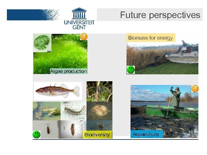 Future perspectives Biomass for energy Algae production Biodiversity Aquaculture