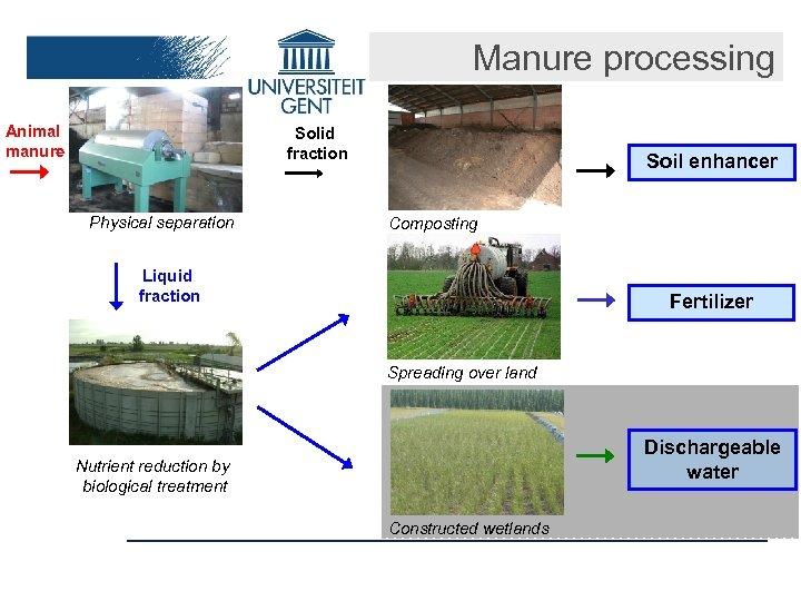 Manure processing Animal manure Solid fraction Physical separation Soil enhancer Composting Liquid fraction Fertilizer