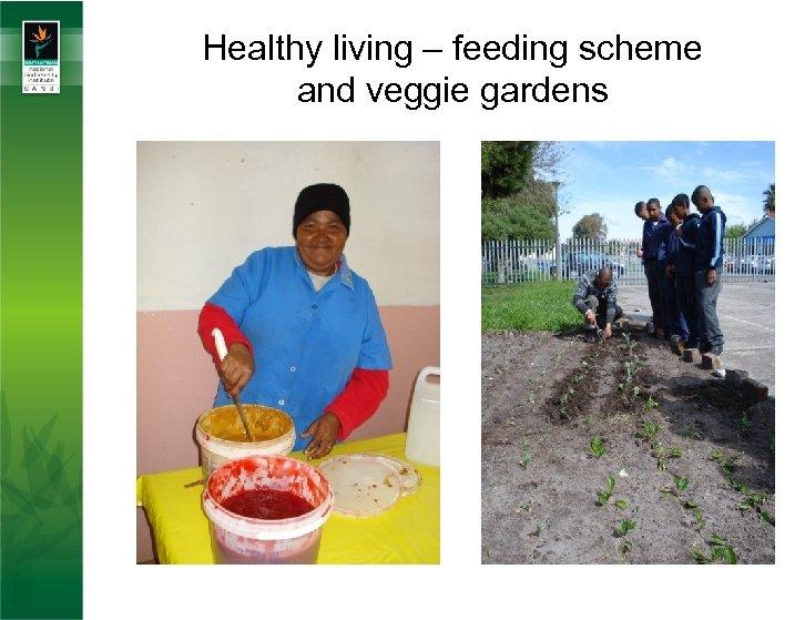 Healthy living – feeding scheme and veggie gardens