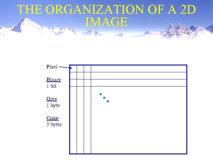 THE ORGANIZATION OF A 2 D IMAGE Pixel Binary 1 bit Grey 1 byte