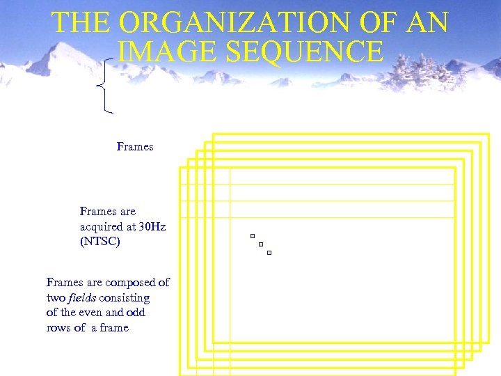 THE ORGANIZATION OF AN IMAGE SEQUENCE Frames are acquired at 30 Hz (NTSC) Frames