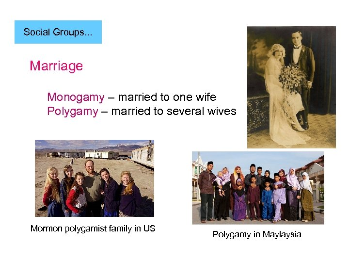 Social Groups. . . Marriage Monogamy – married to one wife Polygamy – married