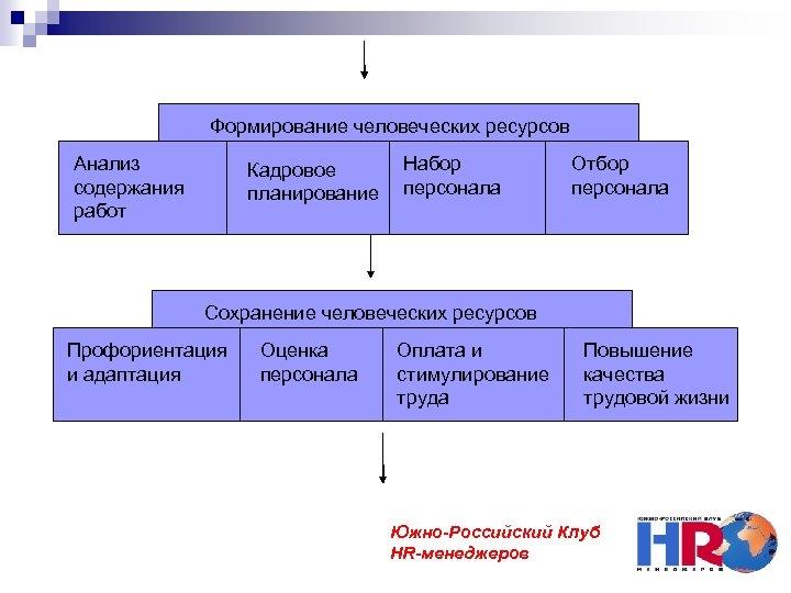 Формирование человеческих ресурсов Анализ содержания работ Кадровое планирование Набор персонала Отбор персонала Сохранение человеческих
