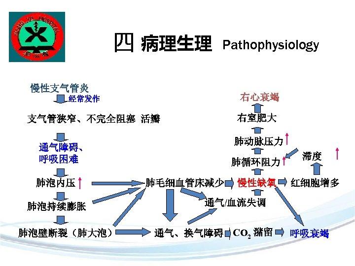 四 病理生理 Pathophysiology 慢性支气管炎 右心衰竭 经常发作 右室肥大 支气管狭窄、不完全阻塞 活瓣 肺动脉压力 通气障碍、 呼吸困难 肺泡内压