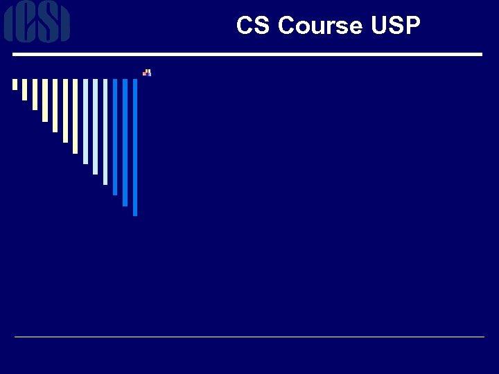 CS Course USP