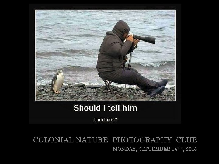 COLONIAL NATURE PHOTOGRAPHY CLUB MONDAY, SEPTEMBER 14 TH , 2015