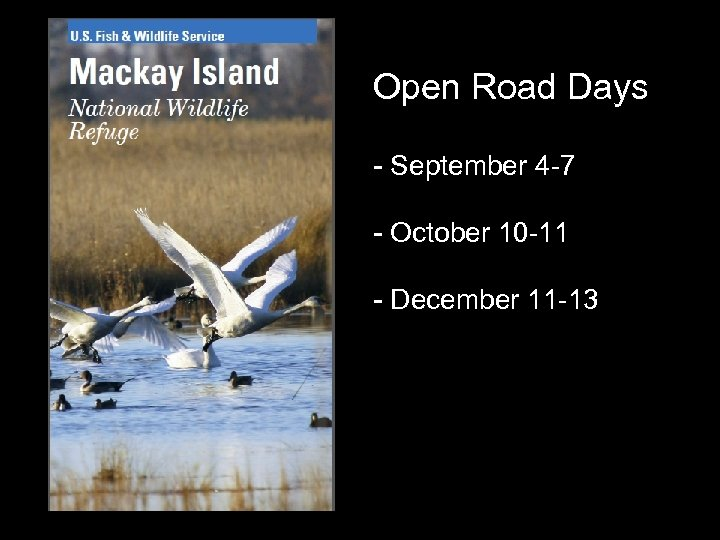 Open Road Days - September 4 -7 - October 10 -11 - December 11