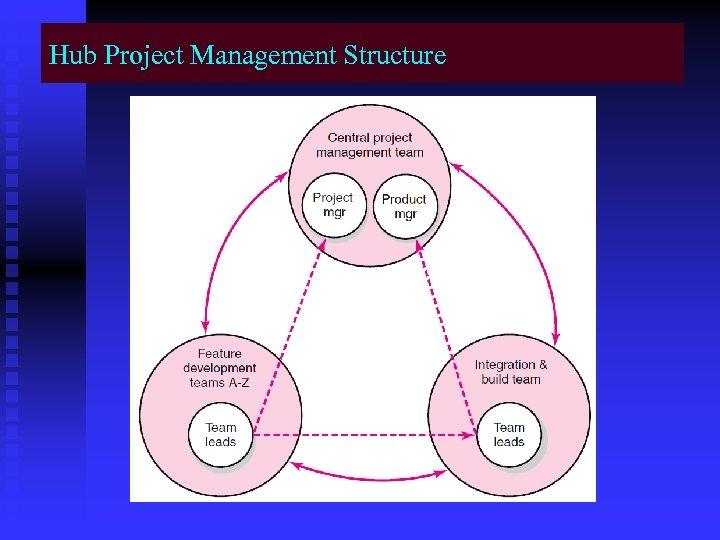 Hub Project Management Structure