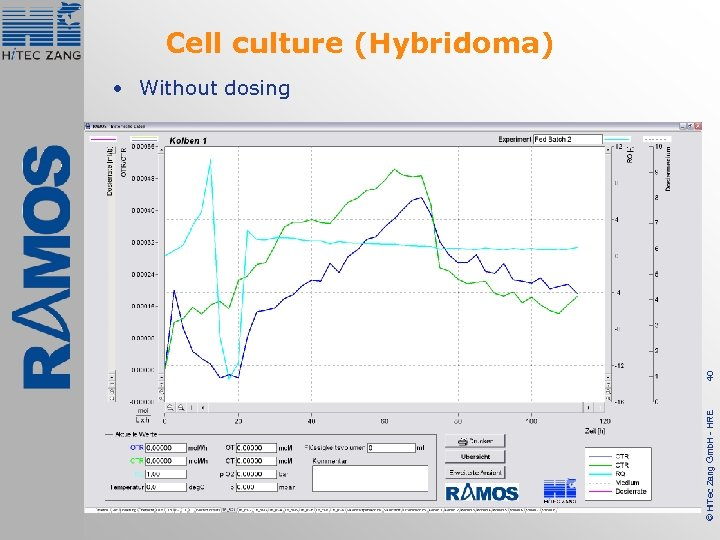 Cell culture (Hybridoma) © Hi. Tec Zang Gmb. H - HRE 40 • Without