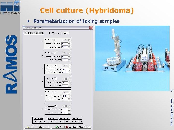 Cell culture (Hybridoma) © Hi. Tec Zang Gmb. H - HRE 43 • Parameterisation