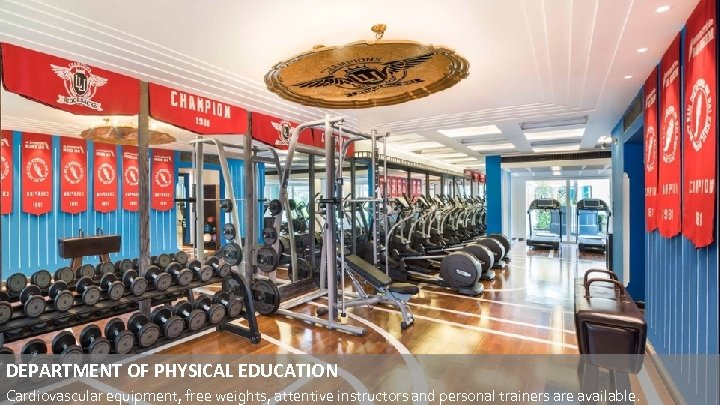 DEPARTMENT OF PHYSICAL EDUCATION Cardiovascular equipment, free weights, attentive instructors and personal trainers are