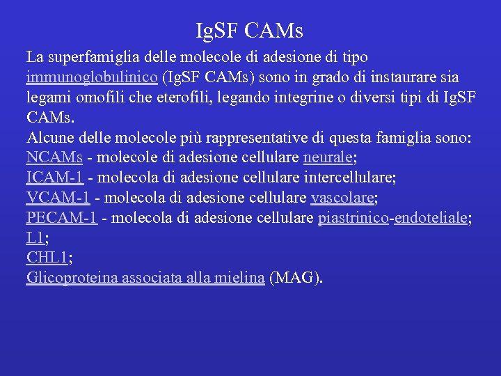 Ig. SF CAMs La superfamiglia delle molecole di adesione di tipo immunoglobulinico (Ig. SF