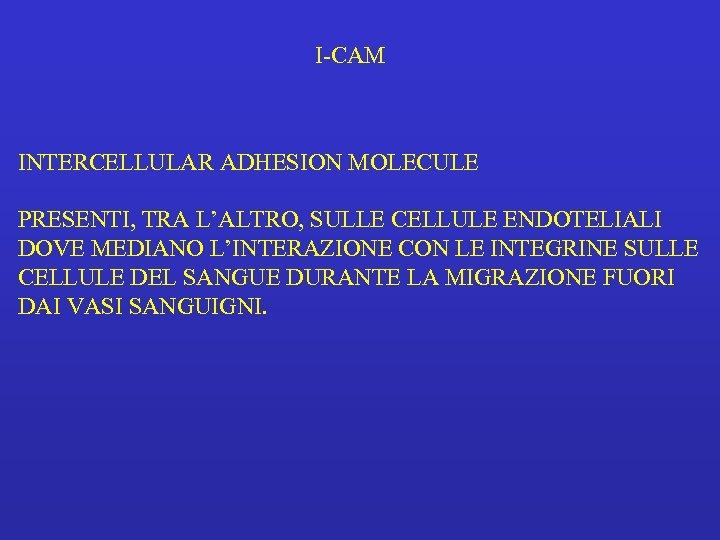 I-CAM INTERCELLULAR ADHESION MOLECULE PRESENTI, TRA L'ALTRO, SULLE CELLULE ENDOTELIALI DOVE MEDIANO L'INTERAZIONE CON