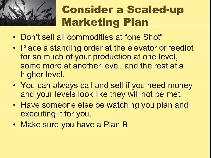 """Consider a Scaled-up Marketing Plan • Don't sell all commodities at """"one Shot"""" •"""