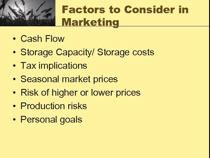 Factors to Consider in Marketing • • Cash Flow Storage Capacity/ Storage costs Tax