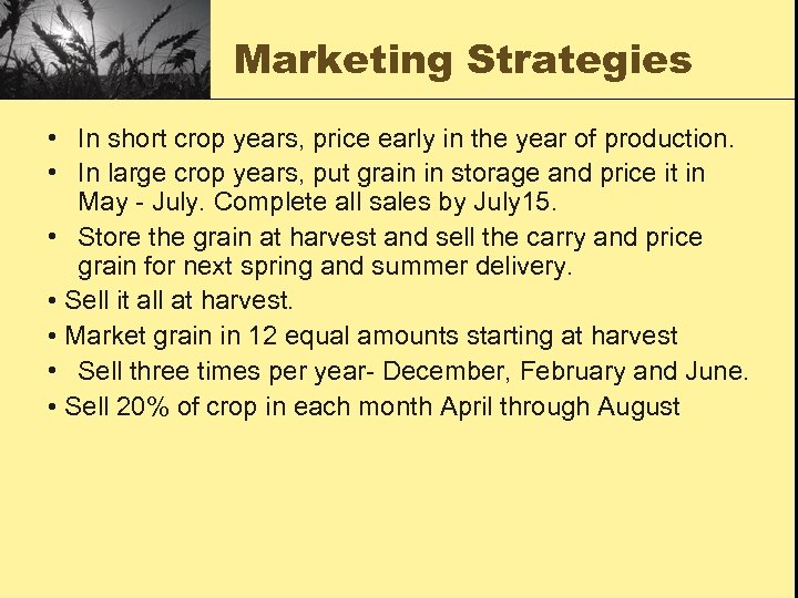 Marketing Strategies • In short crop years, price early in the year of production.