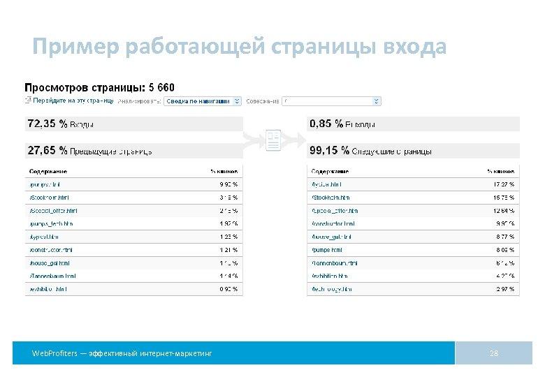 Пример работающей страницы входа Web. Profiters — эффективный интернет-маркетинг 28
