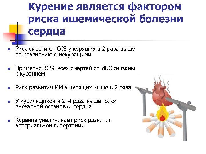 Курение является фактором риска ишемической болезни сердца n Риск смерти от ССЗ у курящих