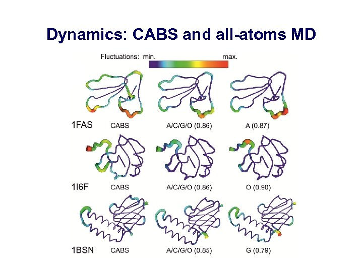 Dynamics: CABS and all-atoms MD
