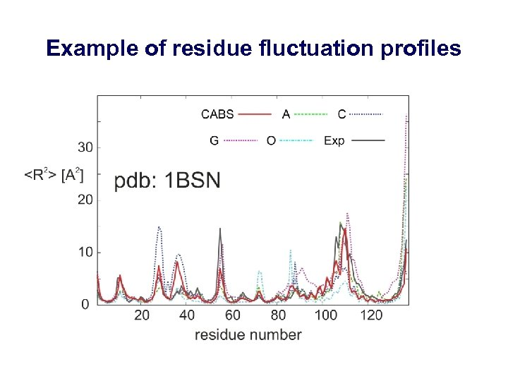 Example of residue fluctuation profiles