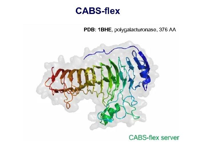 CABS-flex PDB: 1 BHE, polygalacturonase, 376 AA