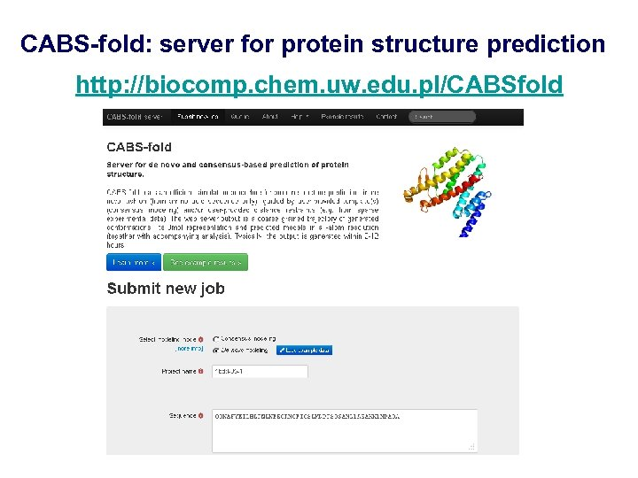 CABS-fold: server for protein structure prediction http: //biocomp. chem. uw. edu. pl/CABSfold